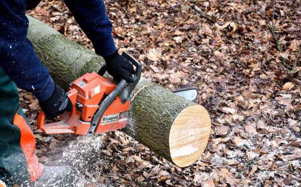 Husqvarna 440 Chainsaw Review